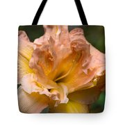 Veiled Mother Of Ivory Iris Tote Bag