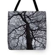 Veins And Vessels Tote Bag
