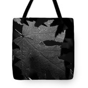 Veins Of A Maple Tote Bag