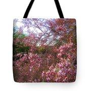 Vekol Wash Desert Ironwood In Bloom Tote Bag