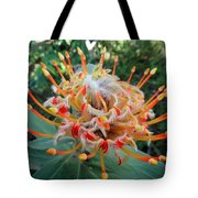 Veldfire Protea Tote Bag