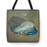 Velella With Shadow Tote Bag