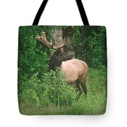 Velvet Never Looked So Good Tote Bag