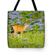 Velvet On Lupine Tote Bag