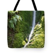 Ventana Wilderness Tote Bag