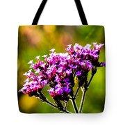 Verbena Bonariensis Evening Light Tote Bag