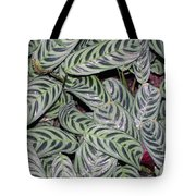 Verigated Green Leaves Tote Bag