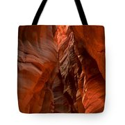 Vermilion Cliffs Narrows Tote Bag