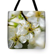 Vermont Apple Blossoms Tote Bag