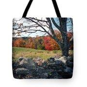 Vermont Autumn Tote Bag