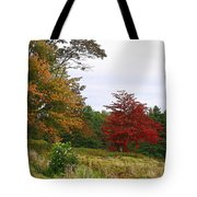 Vermont Roadside Color Tote Bag