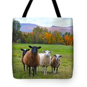 Vermont Sheep In Autumn Tote Bag