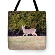 Vermont White-tailed Deer  Tote Bag