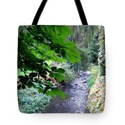 Vernon Creek Tote Bag