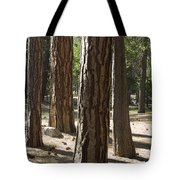 Vertical Of A Stand Of Ponderosa Pine Tote Bag