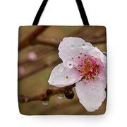 Very Early Peach Blooms Tote Bag