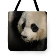 Very Fluffy Furry Face Of A Giant Panda Tote Bag