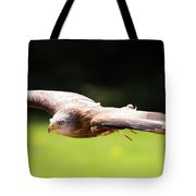 Very Low Pass Tote Bag