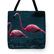 Very Pink Flamingos Tote Bag