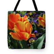 Very Pretty Colorful Yellow And Red Striped Tulip Tote Bag
