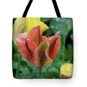 Very Pretty Flowering Pink And Green Striped Tulip Tote Bag