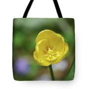 Very Pretty Flowering Yellow Tulip Blooming In A Garden Tote Bag