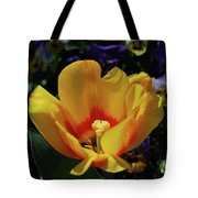 Very Pretty Flowering Yellow Tulip With A Red Center Tote Bag