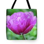 Very Pretty Lavender And Pink Tulip Blossom Flowering Tote Bag