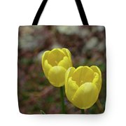 Very Pretty Pair Of Flowering Yellow Tulip Blossoms Tote Bag