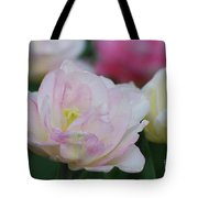 Very Pretty Pale Pink Parrot Tulip Flower Blossom Tote Bag