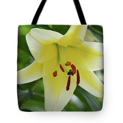 Very Pretty Single Blooming Yellow Daylily Flower Tote Bag