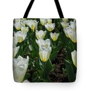 Very Pretty Spring Garden With Flowering White Tulips Tote Bag