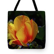 Very Pretty Yellow And Red Tulip Flower Blossom Tote Bag