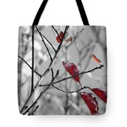 Vestiges Tote Bag
