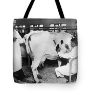 Vets Give Cow A Physical Tote Bag
