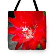 Vibrant Cacti Tote Bag