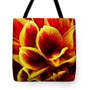 Vibrant Dahlia Petals Tote Bag