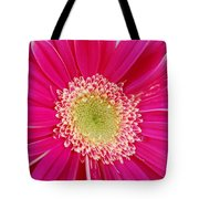 Vibrant Pink Gerber Daisy Tote Bag