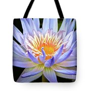 Vibrant White Water Lily Tote Bag