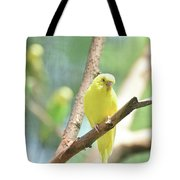 Vibrant Yellow Budgie Parakeet In The Summer Tote Bag
