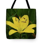 Vibrant Yellow Lily Thriving In The Spring Tote Bag
