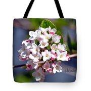 Viburnum Bloom Tote Bag