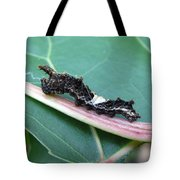 Viceroy Caterpillar Tote Bag