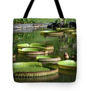 Victoria Amazonica Giant Lily Pads  Tote Bag