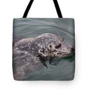 Victoria Seal  Tote Bag