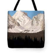 View From A Frozen Lake  Tote Bag