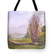 View From Casa Galleria Tote Bag