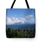 View From Clingman's Dome Tote Bag