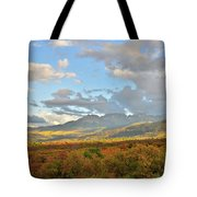 View From Dallas Divide Tote Bag
