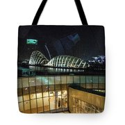 View From Flyer Tote Bag